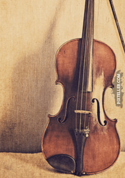 Bowed,                String,                Instrument,                Violin,                Family,                Violone,                Musical,                Viol,                Poster,                Quote,                Simple,                White,                Black,                 Free Image