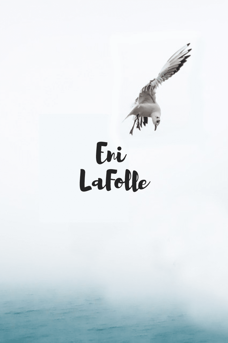 Bird,                Wing,                Poster,                White,                 Free Image