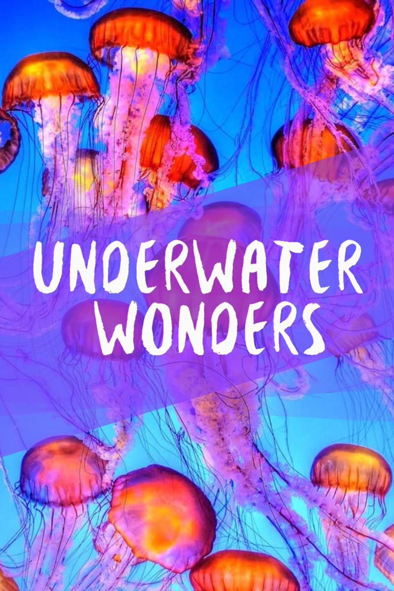 Biology,                Psychedelic,                Art,                Organ,                Illustration,                Invertebrate,                Jellyfish,                Sea,                Underwater,                Poster,                Simple,                White,                Red,                 Free Image