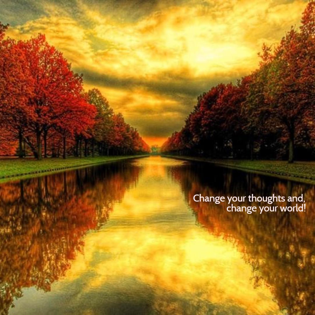 Autumn,                Season,                Morning,                Reflection,                Sunlight,                Black,                Yellow,                Red,                 Free Image