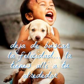 #post #twitter #versos #spanish #atrevete #sonrisa #felicidad