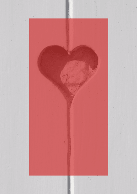 Heart,                Pink,                Organ,                Petal,                Poster,                Text,                Quote,                Simple,                White,                Red,                 Free Image