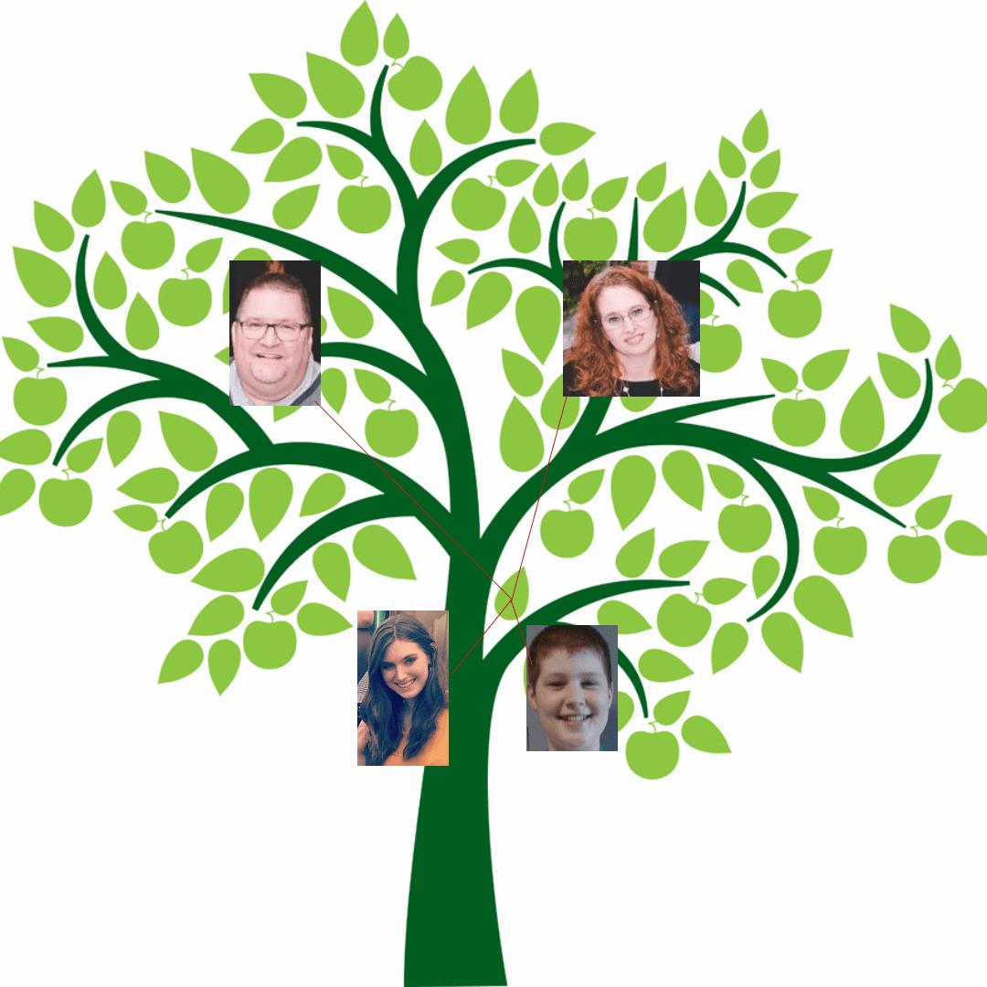 Tree,                Branch,                Cartoon,                Plant,                Leaf,                White,                Black,                Yellow,                 Free Image
