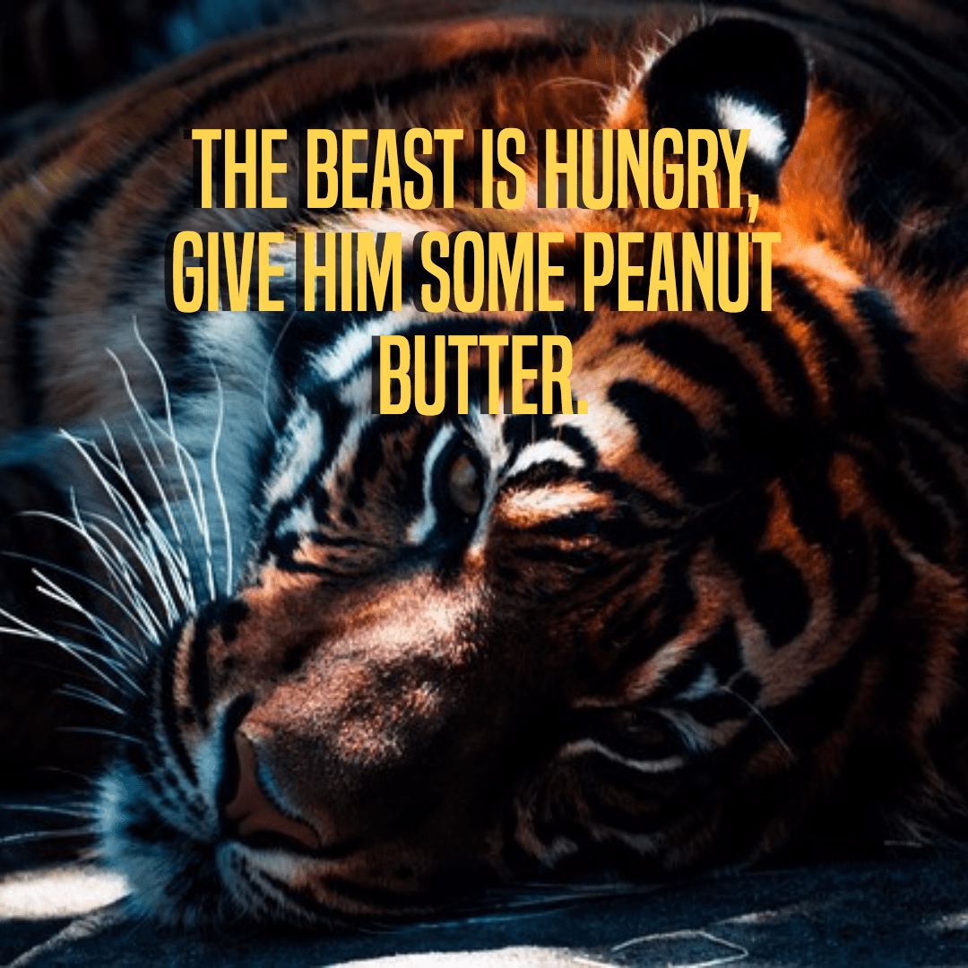 Tiger,                Cat,                Like,                Mammal,                Big,                Cats,                Poster,                Simple,                Black,                 Free Image
