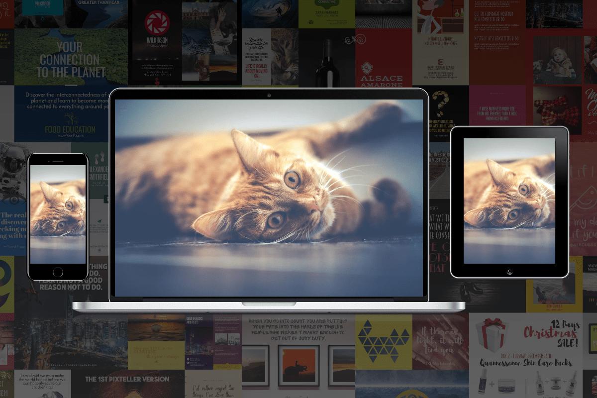 Image,                Screenshot,                Design,                Editing,                White,                Black,                 Free Image