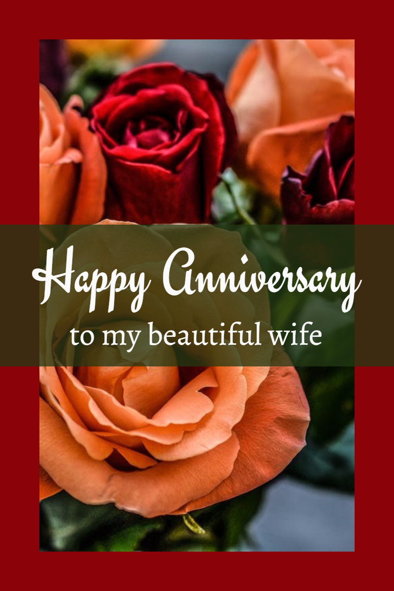 Flower,                Text,                Plant,                Petal,                Valentine's,                Day,                Anniversary,                Wishes,                Black,                Red,                 Free Image