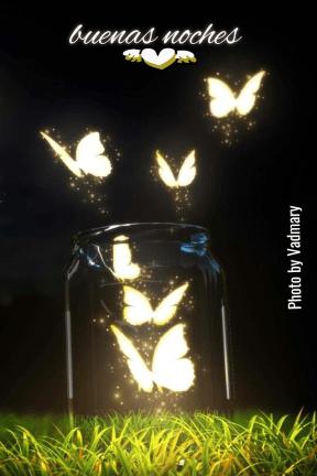 #amigos #buenasnoches #amistad  #instagram #imagen #foto #mariposas