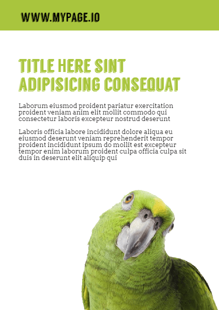 Parrot,                Fauna,                Organism,                Bird,                Biology,                Calltoaction,                Business,                Announcement,                White,                Yellow,                 Free Image
