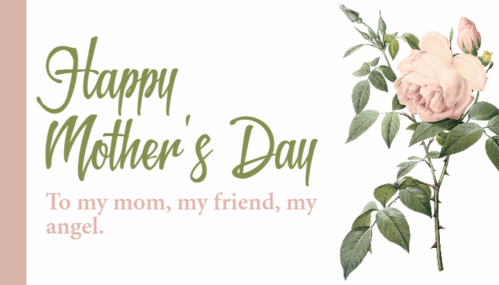 Plant,                Flower,                Font,                Land,                Branch,                Anniversary,                Mother,                Love,                Mom,                White,                 Free Image
