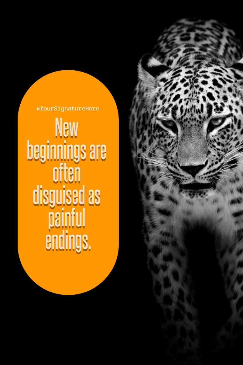 Mammal,                Jaguar,                Black,                And,                White,                Fauna,                Leopard,                Luxury,                Quote,                Poster,                Avatar,                Yellow,                 Free Image