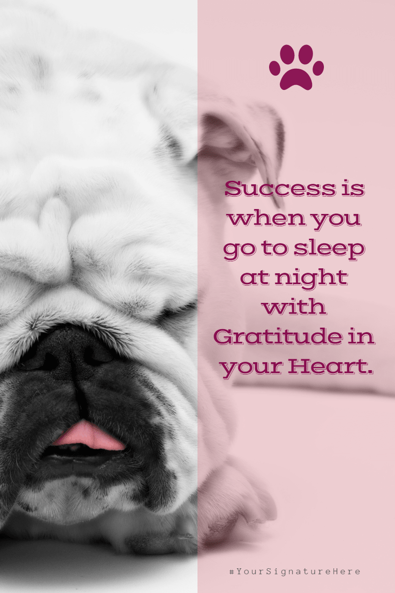 success puppy #funny #avatar #poster Design  Template