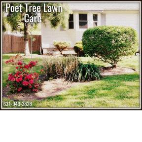 Poet Tree Lawn Care 1
