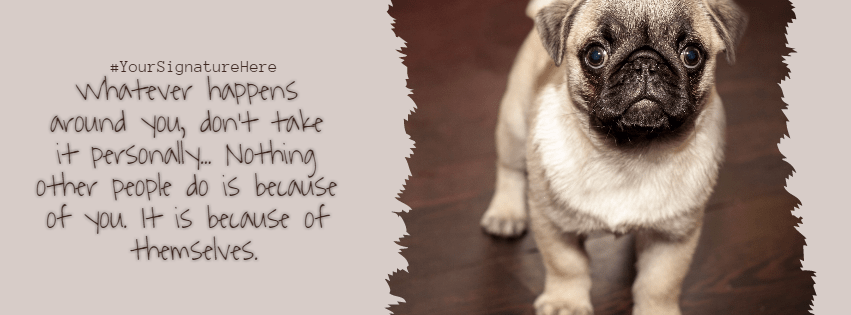 Dog,                Mammal,                Pug,                Like,                Funny,                Quote,                Poster,                White,                Black,                 Free Image