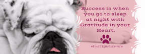 success puppy #funny #poster #quote