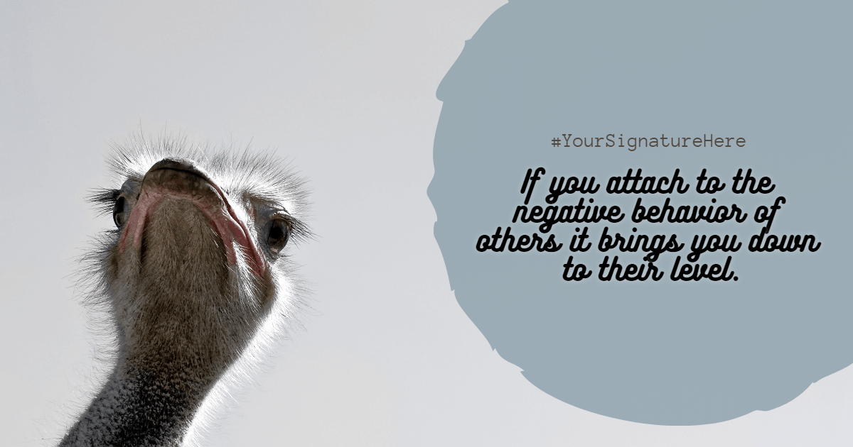 negative #funny  Design  Template