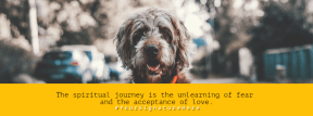 unlearning happy dog #poster #annoucement