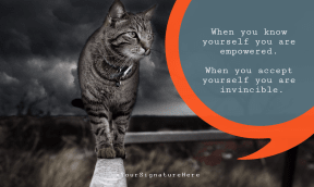 invincible kitty cat #poster #funny