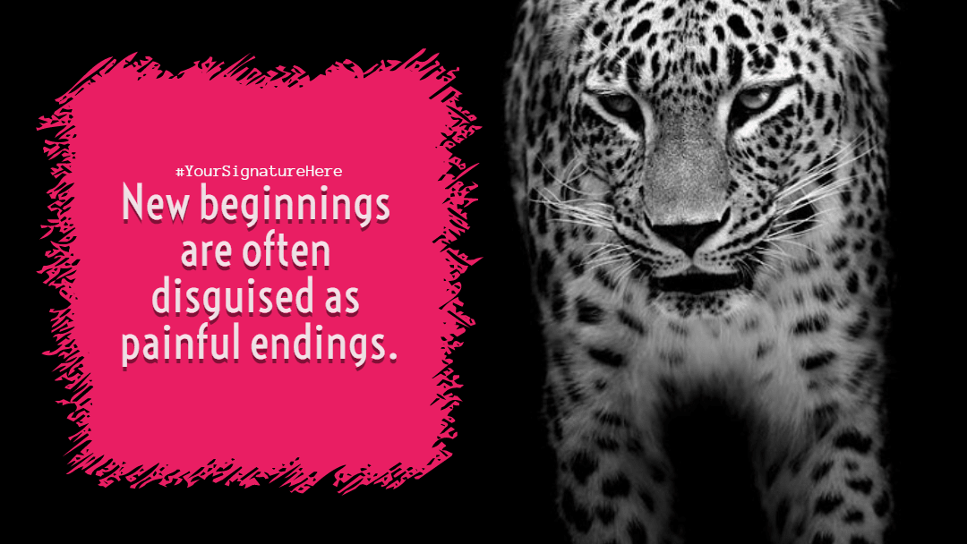 Mammal,                Vertebrate,                Black,                And,                White,                Leopard,                Jaguar,                Luxury,                Quote,                Poster,                Avatar,                Red,                 Free Image