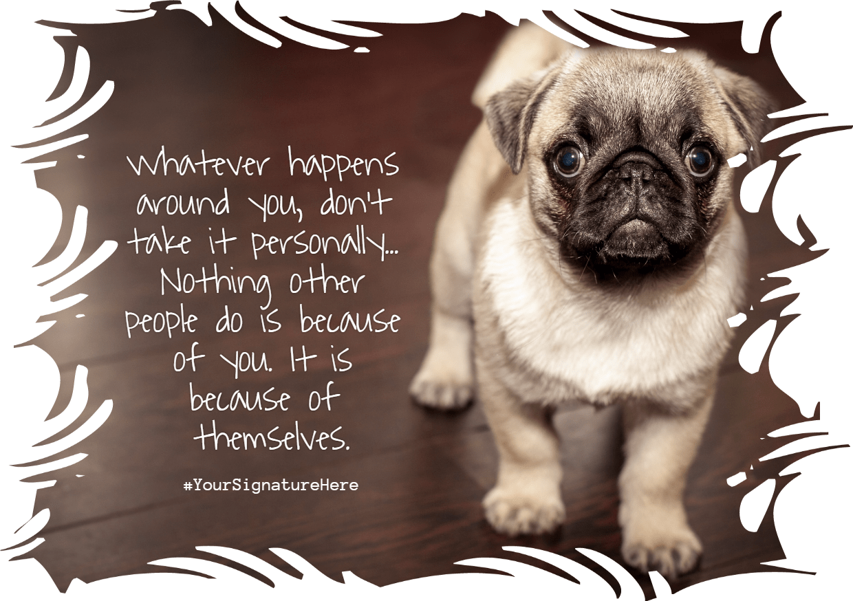 Dog,                Mammal,                Pug,                Breed,                Like,                Funny,                Quote,                Poster,                White,                Black,                 Free Image