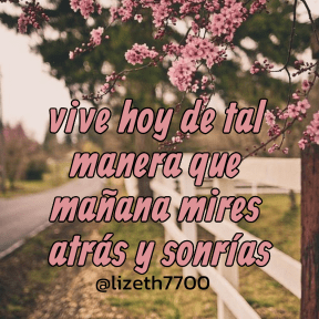 #vive #frases #quotes #spanish