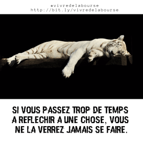 thinking tiger #avatar #poster