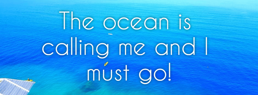 Text,                Font,                Biology,                Brand,                Summer,                Ocean,                Beach,                Fun,                Vacation,                Vibes,                Waves,                Blue,                Aqua,                 Free Image