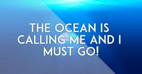 The ocean is calling #summer #ocean #beach #fun #vacation #vibes #waves