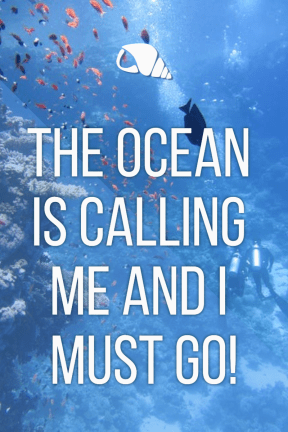 The ocean is calling #summer #ocean #beach #fun #vacation #vibes #waves