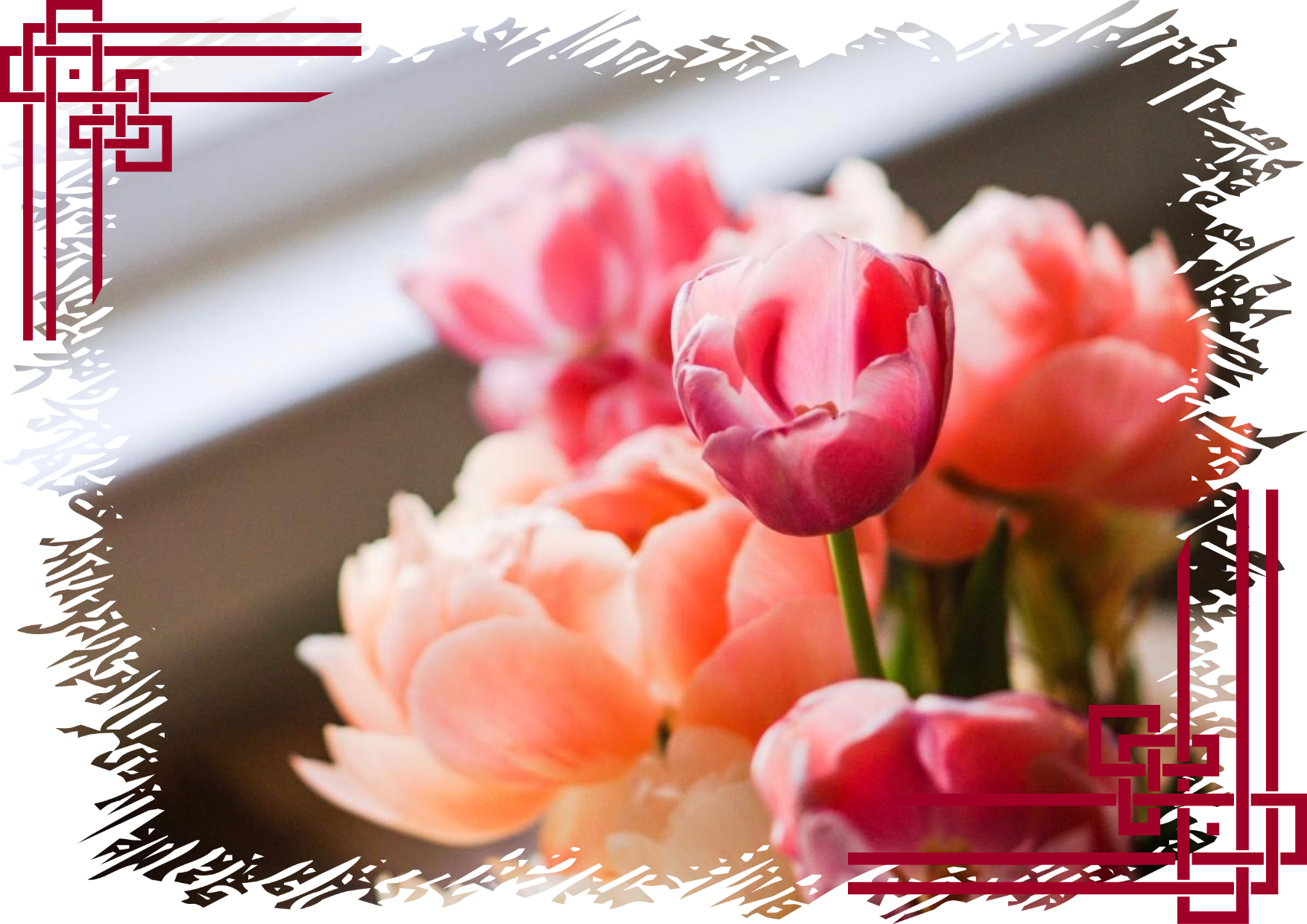 Flower,                Pink,                Plant,                Bouquet,                Arranging,                Image,                Avatar,                Love,                White,                Black,                Red,                 Free Image