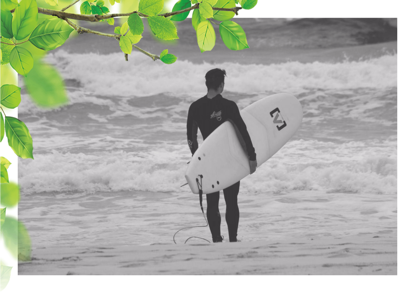 Toy,                Surfboard,                Surfing,                Equipment,                And,                Supplies,                Wind,                Mockup,                Frame,                Image,                Avatar,                White,                 Free Image