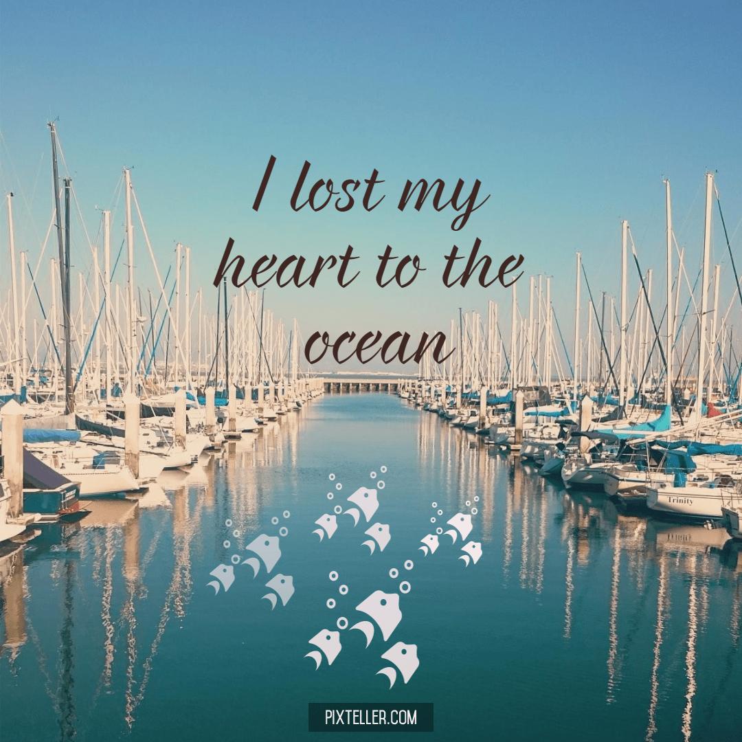 Marina,                Dock,                Boat,                Port,                Vehicle,                Ocean,                Poster,                Quote,                Simple,                White,                Black,                Aqua,                 Free Image