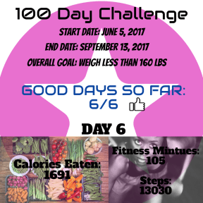 100 Day Challenge Daily Report