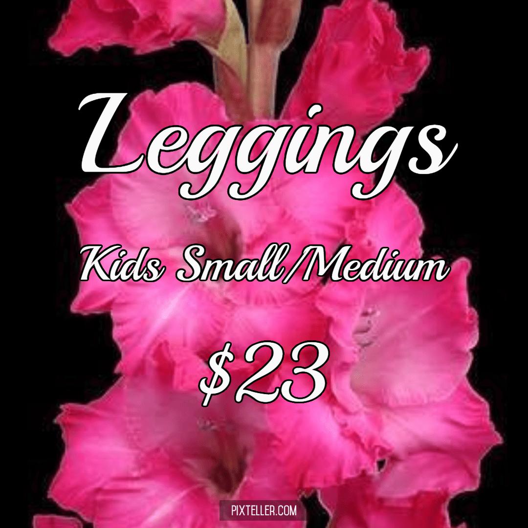 Flower,                Pink,                Plant,                Gladiolus,                Land,                Black,                Red,                Fuchsia,                 Free Image