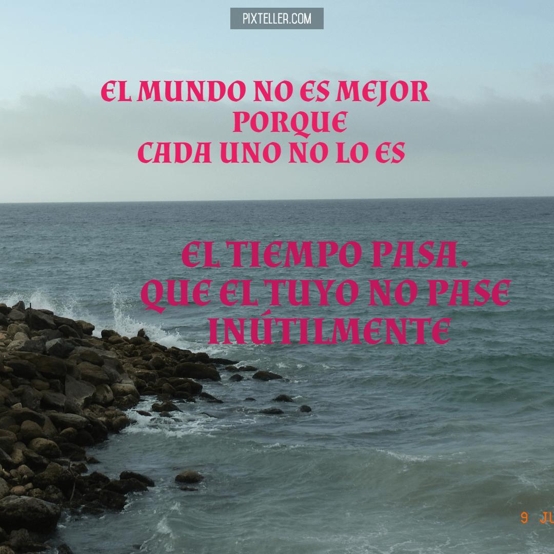 Text,                Ocean,                Biology,                Coast,                Sea,                White,                Black,                 Free Image