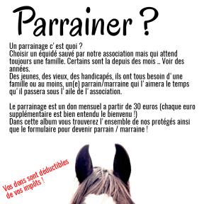 Parrainer