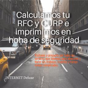 RFC y CURP INTERNET Deluxe