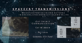 My SpaceCat Transmissions Banner (Private Use)