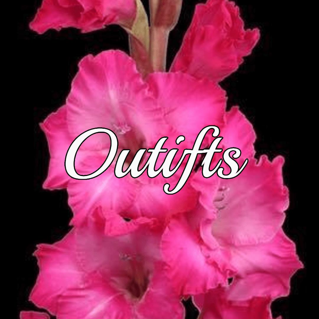 Flower,                Flowering,                Plant,                Pink,                Gladiolus,                Black,                Red,                Fuchsia,                 Free Image
