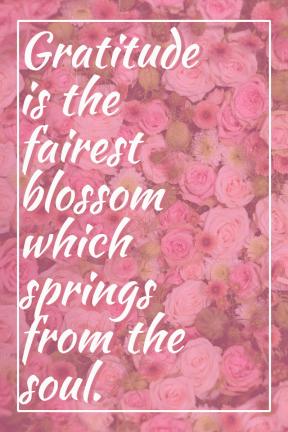 Gratitude is the fairest