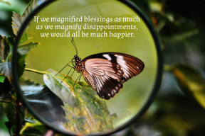 If we magnified blessings