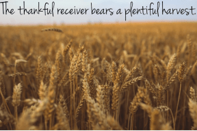 The thankful receiver