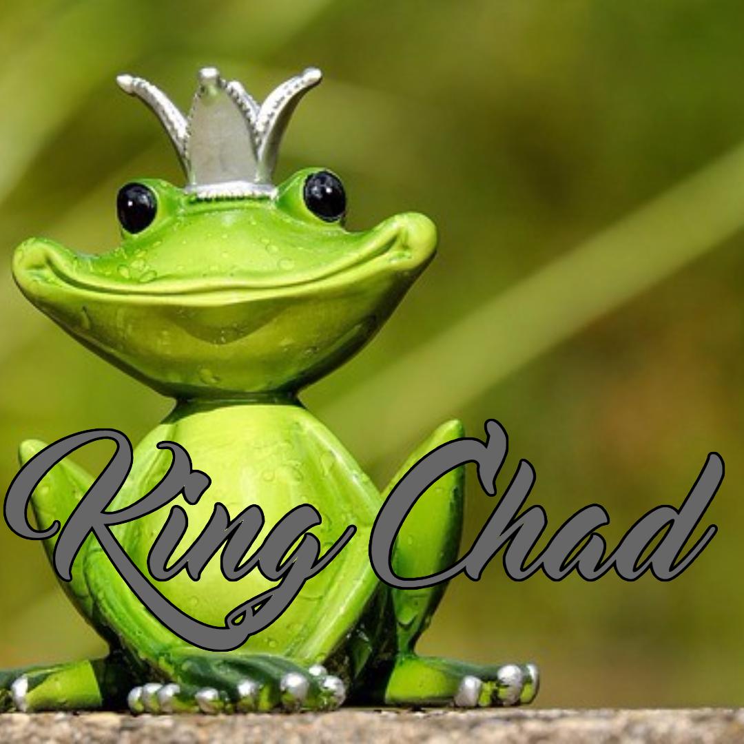 Ranidae,                Frog,                Tree,                Amphibian,                Organism,                Black,                Yellow,                 Free Image