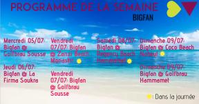 Bigfan 1