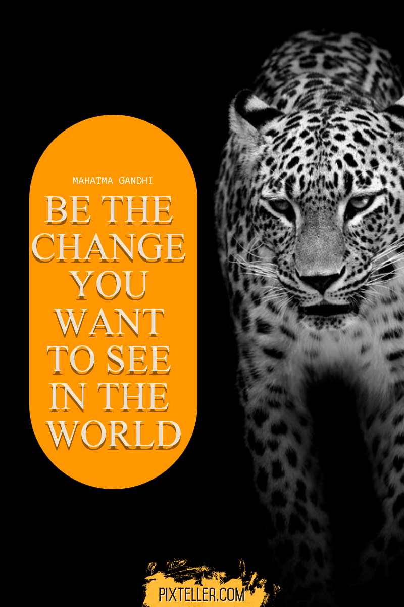 Leopard,                Mammal,                Text,                Black,                And,                White,                Jaguar,                Luxury,                Quote,                Poster,                Avatar,                Yellow,                 Free Image