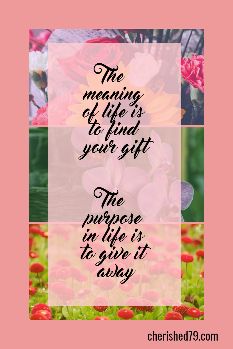 Pink,                Text,                Flower,                Petal,                Font,                College,                Photos,                Images,                X3,                CollegeMaker,                White,                 Free Image