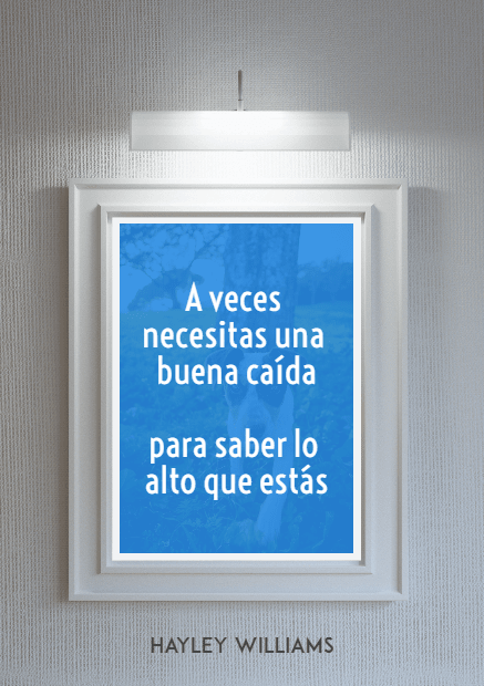 Blue,                Text,                Window,                Picture,                Frame,                Font,                Poster,                Quote,                Mockup,                Inspiration,                Life,                Photo,                Image,                 Free Image