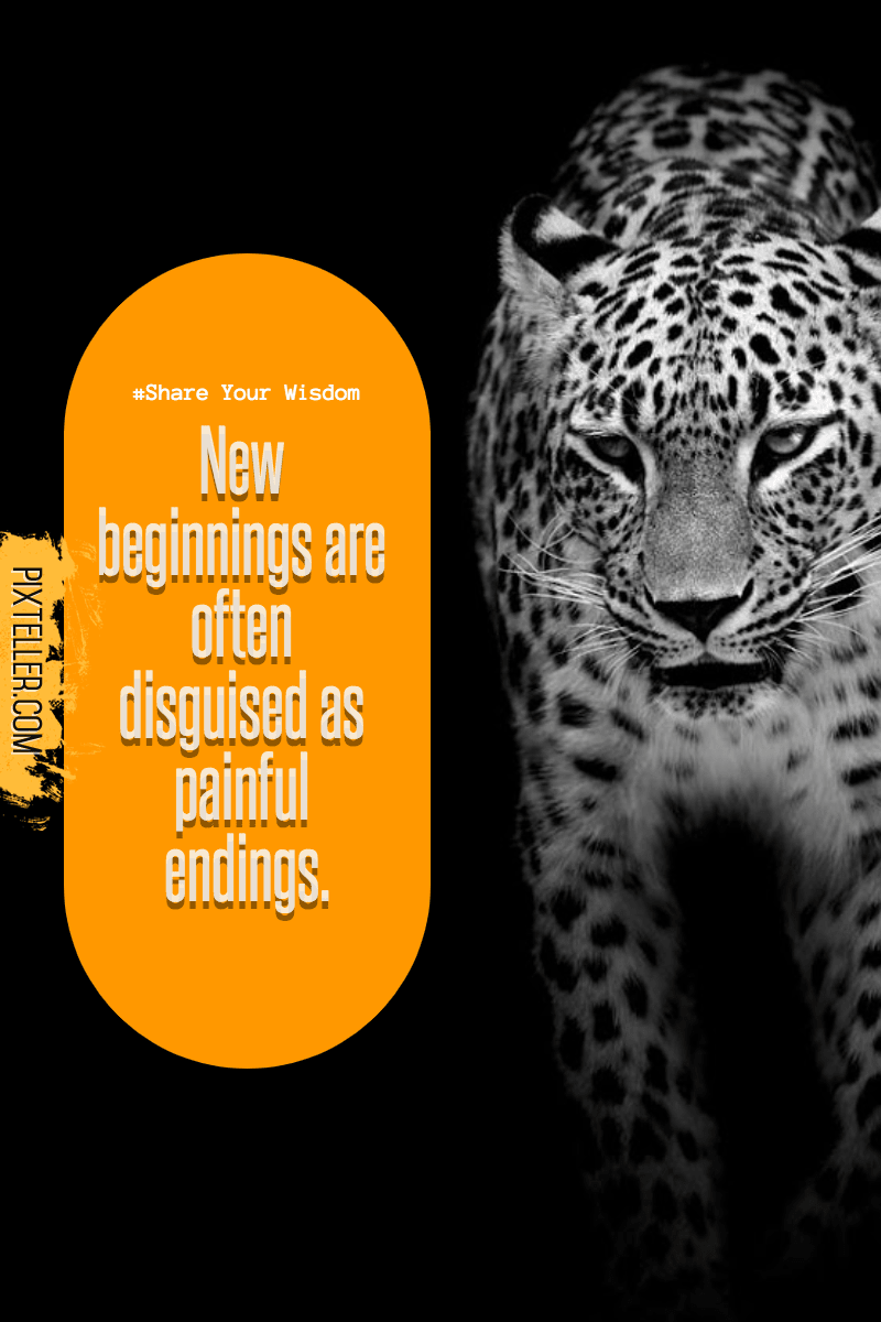 Leopard,                Mammal,                Text,                Wildlife,                Jaguar,                Luxury,                Quote,                Poster,                Avatar,                Black,                Yellow,                 Free Image