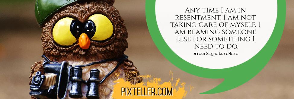 Fauna,                Owl,                Beak,                Bird,                Of,                Prey,                Funny,                Quote,                Poster,                Avatar,                White,                Black,                Yellow,                 Free Image