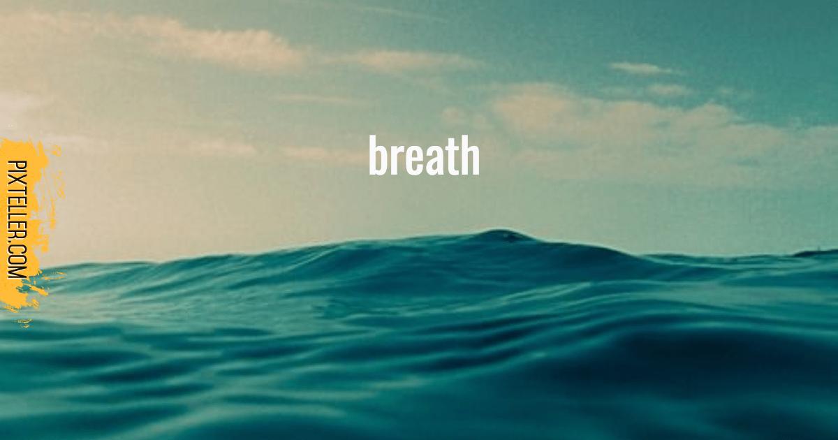 Ocean,                Wave,                Sea,                Water,                Wind,                White,                Black,                Aqua,                 Free Image