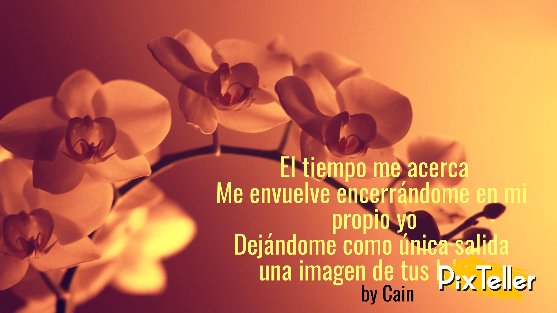 Poema Flores Frases Amor Image Customize Download It For Free